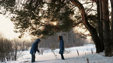 sneeuwbal : Man and woman playing snowballs in the winter forest. Sunset in the winter forest. Stockvideo