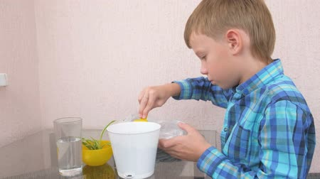 schooler : Plant care concept. Boy is planting houseplant. Shifts the earth in a pot with a small showel. Side view. Stock Footage