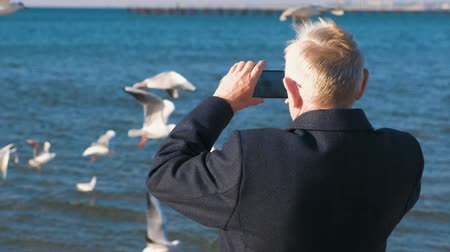 pictured : Elderly gray-haired man photographed on a mobile phone seascape with a pier and seagulls. Back view. Stock Footage