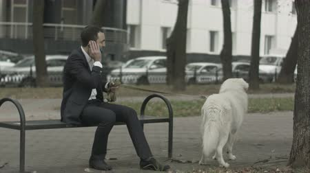 diferansiyel odak : Business man with his white dog talking by phone another black dog at background Stok Video