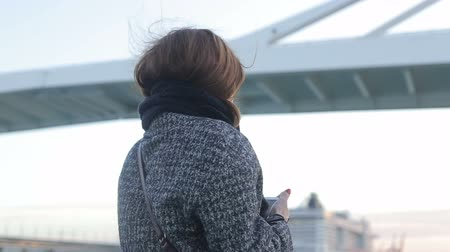 handbag : Woman takeing picture of port bridge on the sail boat Stock Footage