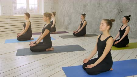 olhos fechados : Group of young women practicing yoga, sitting on yoga mat Stock Footage
