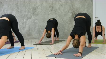 hatha : Attractive happy young women working out indoors, standing in upward-facing dog pose, urdhva mukha svanasana