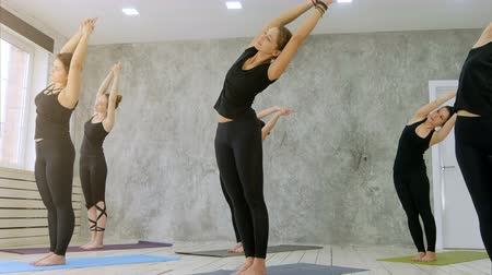 hatha : Yoga practice exercise class concept Stock Footage