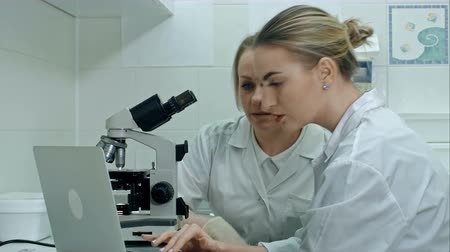 Two young laboratory technician with laptop and a microscope in the laboratory