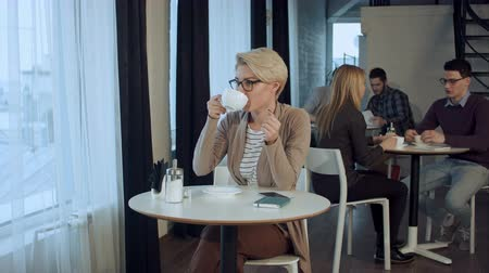 ruptura : Portrait of young gorgeous female drinking tea and thoughtfully looking out of the coffee shop window while enjoying her leisure time alone Archivo de Video