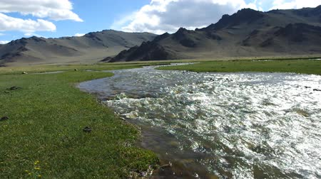 corrente : Mongolian Altai. Current mountain stream, Scenic valley on the background of the snowcapped mountains. Vídeos
