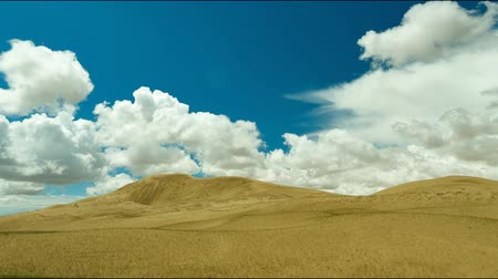 moğolistan : Mongolia. Sands Mongol Els, sandy dune desert, bright sunny day Stok Video