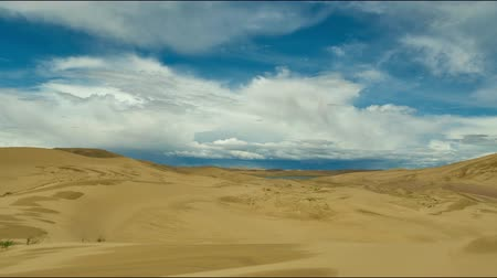 altay : Mongolia. Sands Mongol Els, sandy dune desert, bright sunny day Stok Video