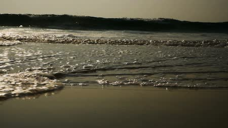 starfish : Waves wash over golden sand on the beach Stock Footage