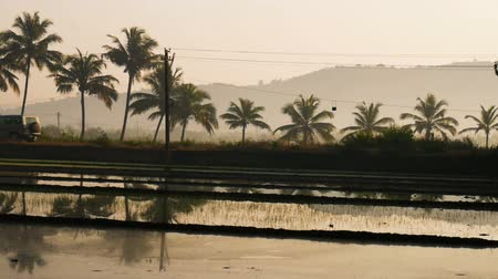 mamãe : Beautiful view of flooded rice paddy field with a road during sunrise in India Stock Footage