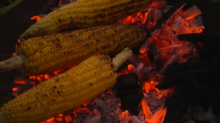 食用 : Grilled corn on the hot stove