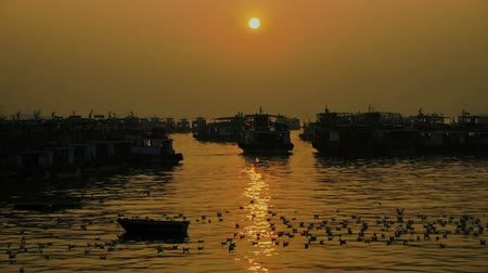 fish eye : Fishing boat on the sea at sunset. Birds seagulls are flying on the sea.