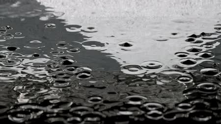 pingos de chuva : 3D animation of the rain droplets in a street puddle with a reflections of pedestrian traffic