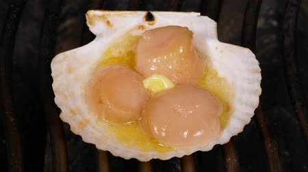 scallop : UHD shot of delicious scallops being fried in a shell with butter Stock Footage