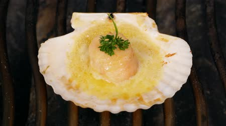 scallop : UHD shot of delicious scallop being fried in its shell with butter