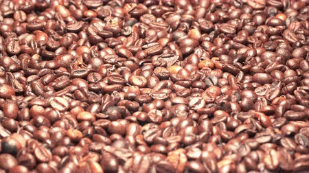 арабика : UHD graded closeup shot of the roasted coffee beans on a turntable