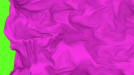 abridor : UHD 3D animated opener or transition of the purple waving cloth revealing a background Stock Footage