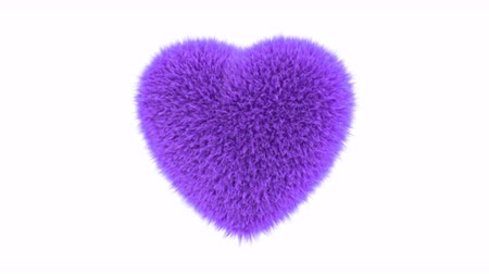 kürklü : UHD 3D looping animation of the fluffy purple heart with alpha matte Stok Video