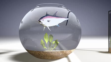 a lonely fish decides to jump to be with the others again determination challenge success and strength concept