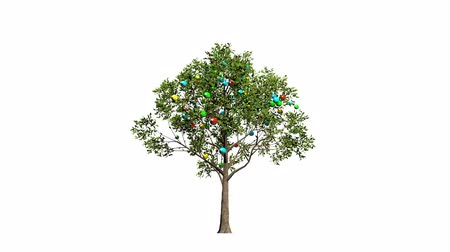 3d rendering of a growing tree with colorful christmas balls