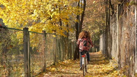 отдыха : Woman cycling in autumn park Стоковые видеозаписи