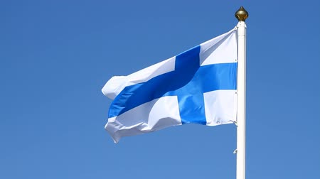 fince : Flag of Finland on a background sky