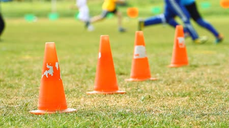 sport dzieci : Chips on the soccer field and training children
