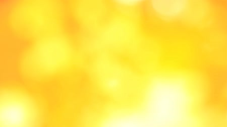 Autumn yellow blurred background of maple leaves Stock Footage
