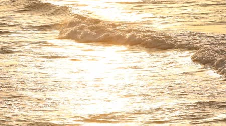 Beautiful waves in the morning Stock Footage