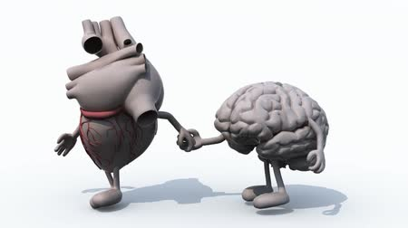 human heart and brain that walk hand in hand, 3d animation loop Wideo