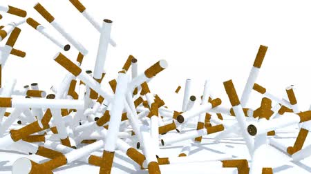 many cigarettes fall on white background, 3d animation Wideo