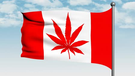 dispensary : Canadian flag with marijuana leaf instead of Maple Leaf, 3d animation Stock Footage
