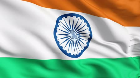 indie : Realistic 3d seamless looping India flag waving in the wind. Wideo