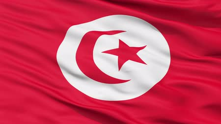 hymn : Realistic 3D detailed slow motion tunisia flag in the wind - seamless looping
