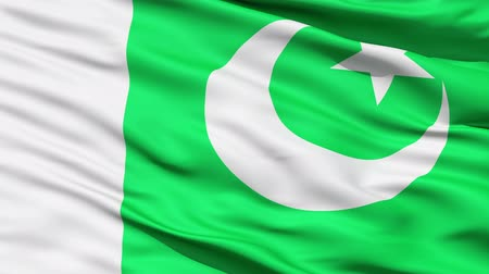 alegorie : Waving Flag Of Pakistan, or the Flag Of The Crescent and Star