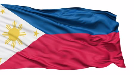 allegiance : Flying bicolor flag of the Philippines with central golden sun representing the provinces and stars the islands.