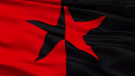 alegorie : Red and Black Star Flag, symbolising the co-existence of anarchist and socialist ideals.