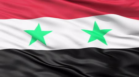 allegiance : Waving Flag Of Syria with two green stars representing Syria and Egypt on equal red, white, black bands