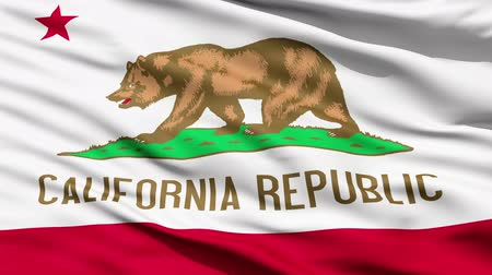 vlastenectví : Waving Flag Of The US State Of California, also known as the Bear Flag.