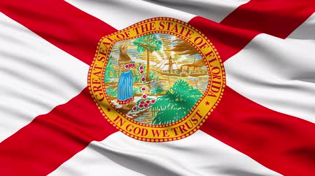 allegiance : Waving Flag Of The US State of Florida with a red saltire and official seal. Stock Footage
