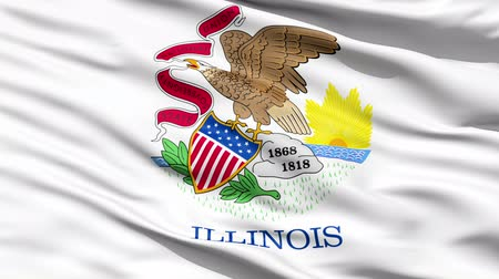 allegiance : Waving Flag Of The US State of Illinois with the state seal depicting an eagle with a banner in its beak.