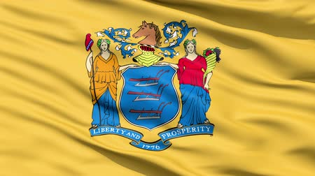 alegorie : Waving Flag Of The US State of New Jersey bearing the Great Seal.