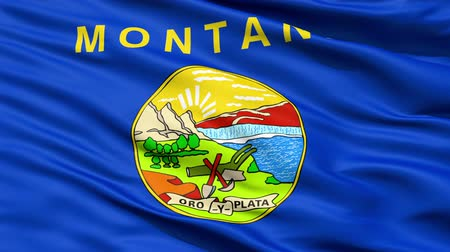 pecsét : Waving Flag Of The US State of Montana with the official seal containing the Great Falls of the Missouri River