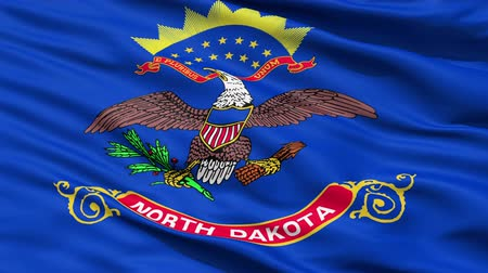 alegorie : Waving Flag Of The US State of North Dakota which is a copy of the unit banner carried by their troops in the Phillipines-Americain War.