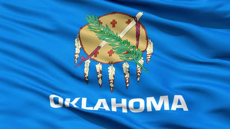 alegorie : Waving Flag Of The US State of Oklahoma with a traditional Osage nation buffalo skin shield and eagle feathers.