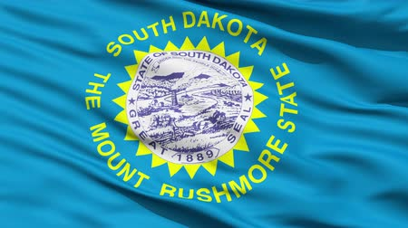 alegorie : Waving Flag Of US State Of South Dakota with the official seal surrounded by golden triangles representing the suns rays. Dostupné videozáznamy