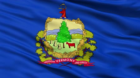 allegiance : Waving Flag Of The State Of Vermont, America, with the states official coat of arms and motto in the centre.