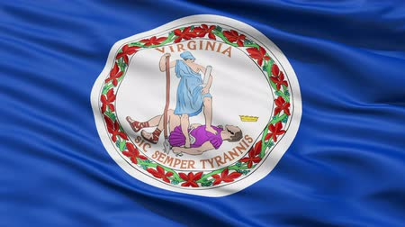 fazilet : Waving Flag Of The Commonwealth Of Virginia, America, with the official seal depicting the Roman virue of Virtus in the centre.