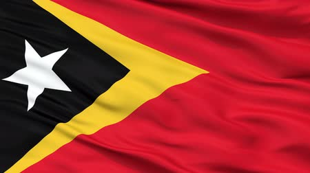 east timor : East Timor Flag Close Up Realistic Animation Seamless Loop - 10 Seconds Long